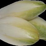 Witlof/gehakt stoofpot