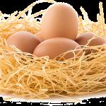 Gehaktbrood met ei voor de paasdagen