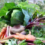 Een stamppot voor verschillende groentes